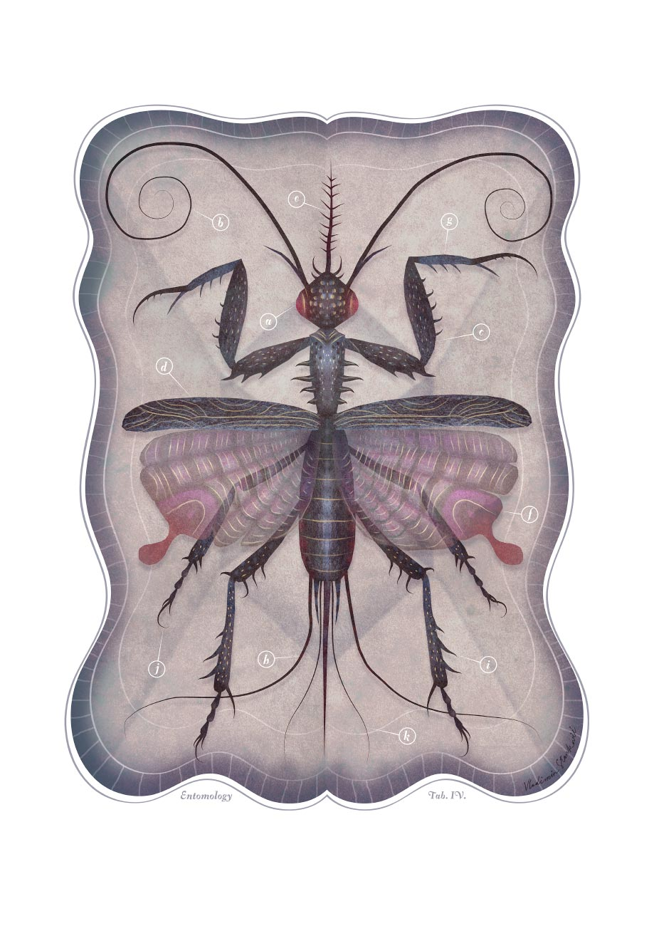 ENTOMOLOGY_TAB_IV