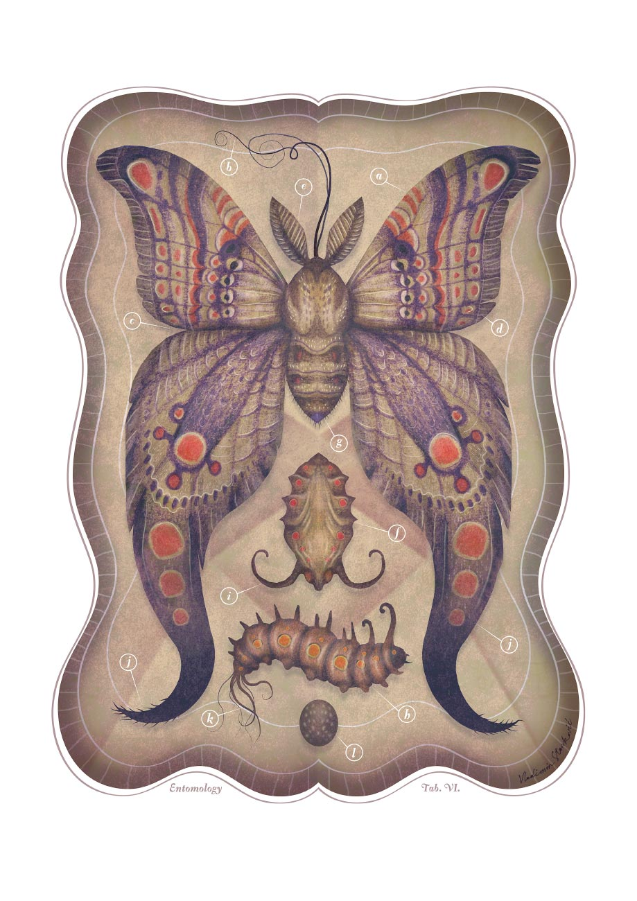 ENTOMOLOGY_TAB_VI