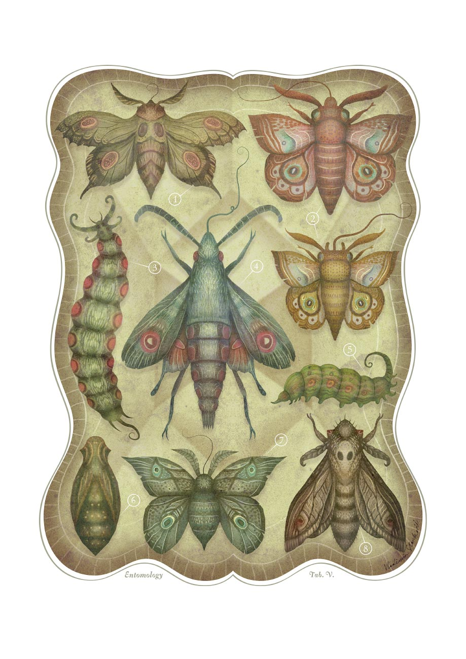 ENTOMOLOGY_TAB_V